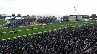 Cheltenhamský festival navštívilo kolem 250 tisác lidí.
