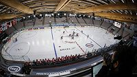 V Calgary se hraje světový šampionát hokejistek.