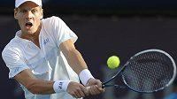 Český tenista Tomáš Berdych na turnaji v Dubaji.