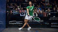 Squashová legenda Raneem El Welilyová bude maminkou, ukončila kvůli tomu kariéru.