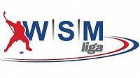 Logo WSM Ligy - ilustrační foto.