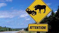Podobné varovné značky možná přibudou i na běžecké stezky.