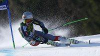 Ted Ligety na trati obřího slalomu ve slovinské Kranjské Goře.