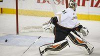 Střídající dánský gólman Anaheimu Ducks Frederik Andersen sleduje v utkání proti Calgary, jak za jeho záda míří puk.