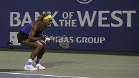 Serena Williamsová se raduje z postupu do semifinále turnaje ve Stanfordu na úkor Srbky Ivanovičové.