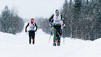 Stanislav Řezáč na trati Nordenskiöldsloppetu - 220 km dlouhého závodu v Laponsku.