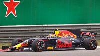 Max Verstappen při Velké ceně Číny.