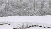 Golfové hřiště v Arizoně zasypal sníh