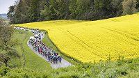 Pole závodu Tour de Romandie.