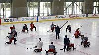 Příprava hokejistů na NHL.