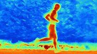 Vyšší teploty mohou mít na zatěžovaný organismus destruktivní účinek.