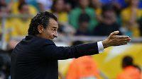 Italský kouč Prandelli gestikuluje směrem ke svému mužstvu během utkání s Brazilci.