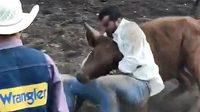 Zápasník MMA Luke Rockhold změřil síly s býkem.
