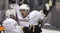 Hokejový útočník Anaheimu Teemu Selänne slaví gól