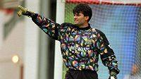 Pavel Srníček hájil v 90. letech branku Newcastlu, s kterým bojoval o přední příčky Premier League.