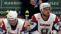 Slovinští hokejisté Rok Pajič (vlevo) a Bostjan Golčič
