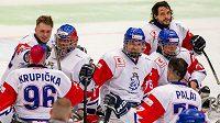 Čeští parahokejisté během utkání MS v Ostravě proti USA.