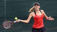 Tenistka Nicole Vaidišová po svém comebacku