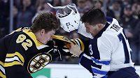 Bitka Trenta Fredericka a Brandona Taneva v utkání mezi Bostonem Bruins a Winnipegem Jets