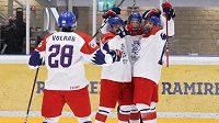 Čeští hokejisté vstoupili do zápasu výborně