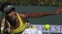 Americká tenistka Venus Williamsová by se přesunu turnaje v Miami směrem k týmovému stadiónu Dolphins nebránila.