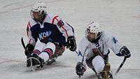Čeští sledge hokejisté se v utkání s Koreou dočkali první výhry na paralympiádě ve Vancouveru. Vpravo Zdeněk Hábl, vlevo Sang Hyeon Park.