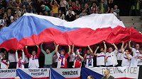 Čeští fanoušci Davis Cup dlouho neuvidí