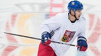 Obránce Zbyněk Michálek strávil většinu roku také v AHL