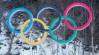 Obyvatelé Calgary se v referendu vyslovili proti pořádání zimních olympijských her v roce 2026 (ilustrační foto).