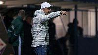 Trenér Liberce Jindřich Trpišovský při utkání s Fiorentinou.