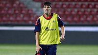 David Villa na archivním snímku z tréninku španělské fotbalové reprezentace.