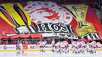 Finále hokejové extraligy bude moci sledovat omezený počet fanoušků (ilustrační foto)
