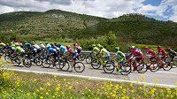 Peloton na trati letošního závodu Giro d'Italia.