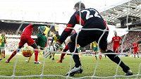 Dieumerci Mbokani (číslo 9) z Norwiche právě zády k bráně patičkou překonává liverpoolského gólmana Mignoleta.