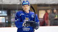 Útočník české hokejové reprezentace Dominik Kubalík.