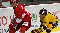 Hokejisté Frýdku-Místku si poradili s Ústím nad Labem