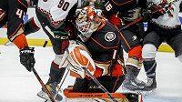 Gólman Anaheimu Ducks Lukáš Dostál zasahuje v přípravě před startem NHL.