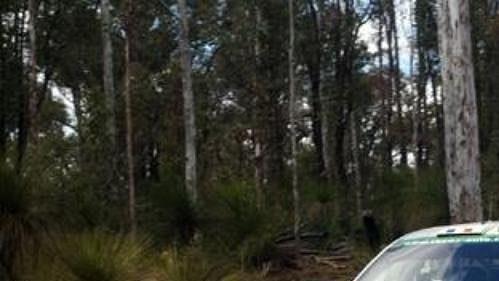 Dider Auriol s fabií na trati 14. rychlostní zkoušky Australské rallye.