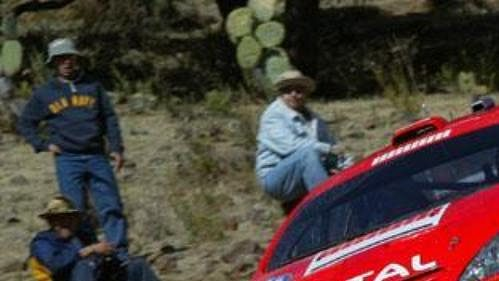 Markko Märtin s peugeotem na trati Mexické rallye.