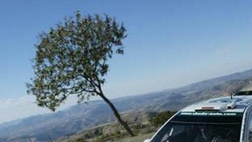 Němec Armin Schwarz s Fabií WRC na trati první rychlostní zkoušky první etapy Mexické rallye.