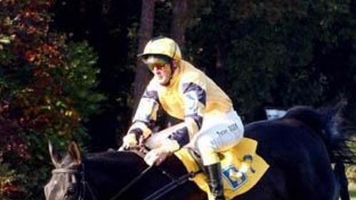 Osmiletá klisna Registana s žokejem Peterem Gehmem vyhrála 114. ročník Velké pardubické.