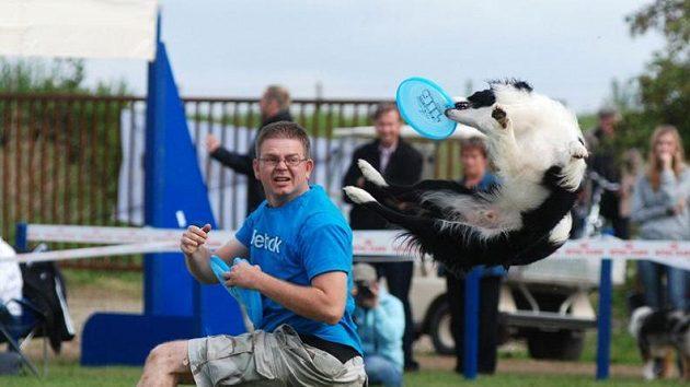 Jedná se o první akci svého druhu u nás, obvykle si jednotlivé frisbee sporty pořádají své závody a turnaje zvlášť.