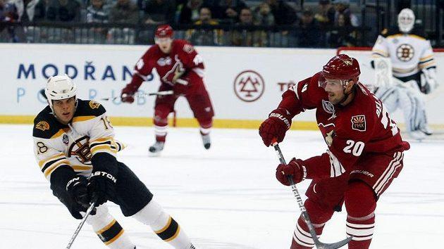 Horton z Bostonu v souboji s Belangerem z Phoenixu ve druhém pražském utkání NHL.