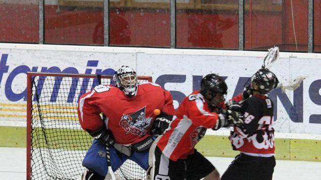 Finále NBLL 2010, LCC Radotín – SK Lacrosse Jižní Město