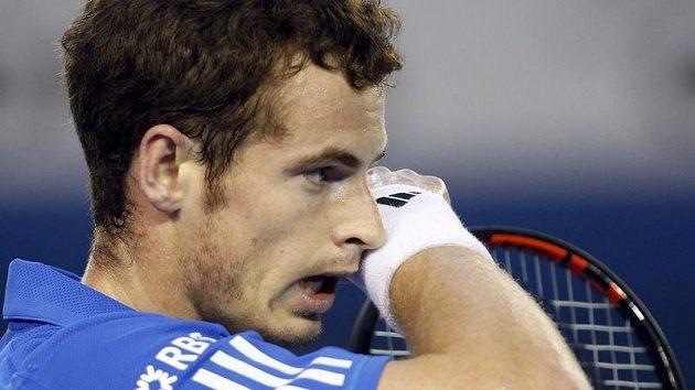 Andy Murray během finále Australian Open