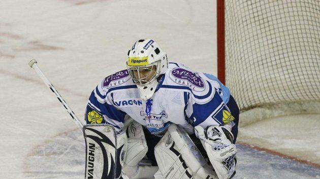 Brankář hokejistů Kladna Martin Falter