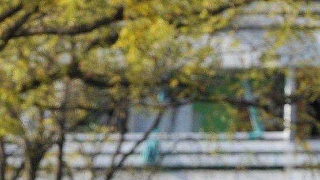 Fotbalisté české reprezentace si vyšli na procházku po černohorské Podgorici, kde se utkají v odvetě baráže o postup na mistrovství Evropy s Černou Horou. Na snímku Michal Kadlec (vlevo) a Tomáš Rosický.