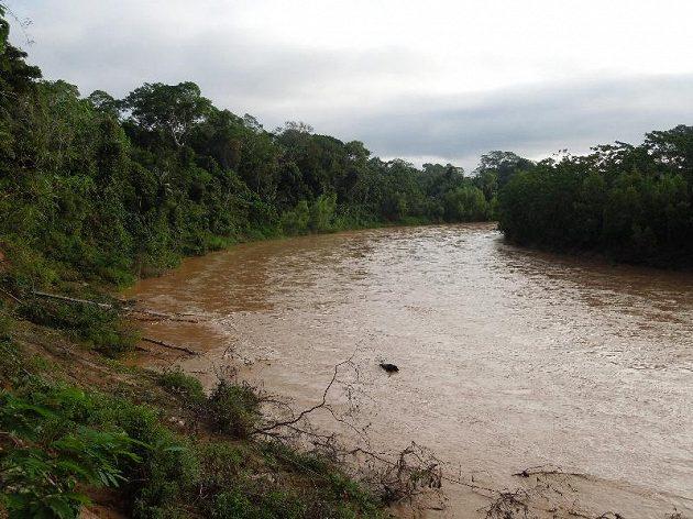 Řeka uprostřed pralesa. Jsou tam krokodýli, nebo jen piraně?