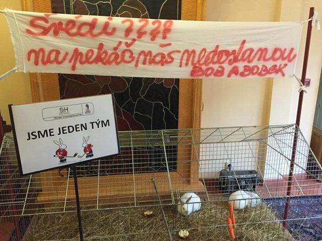 Na české hokejisty čekalo překvapení v jejich hotelu.