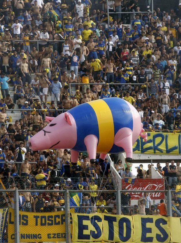 Fanoušci Boky Juniors si našli originálního maskota - nafukovací prase v klubových barvách.